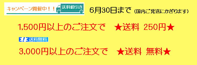 6月30日まで1,500円以上送料250円、3,000円以上送料無料キャンペーン