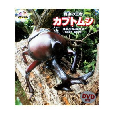 昆虫の王者カブトムシ 自然なぜなに? DVD図鑑1