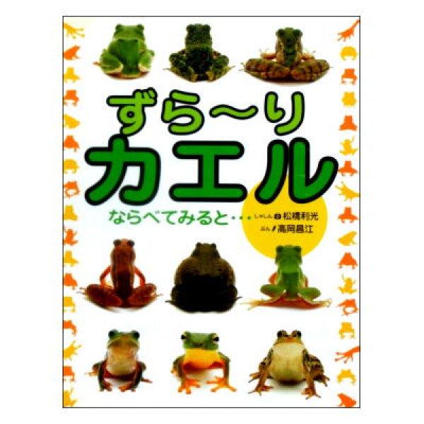 画像1: ずら〜りカエル ならべてみると… (1)