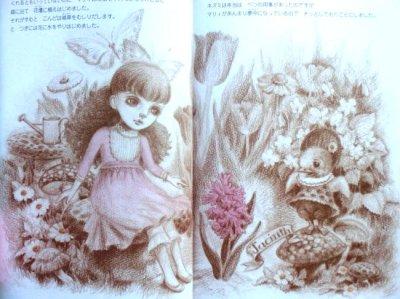 画像1: 森の謝肉祭 ★舟崎克彦/野村直子★帯付き・初版本