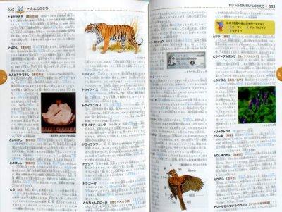 画像3: きっずジャポニカ 小学百科大事典