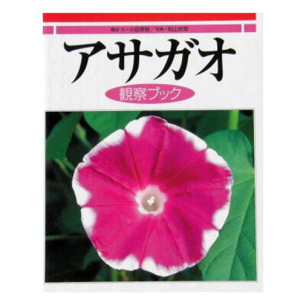 画像1: アサガオ 観察ブック ★2009年新刊・美品★ (1)