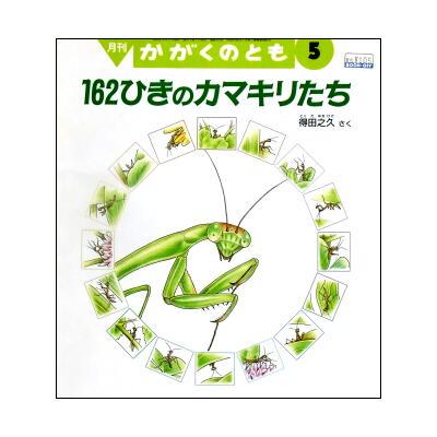 【かがくのとも】得田之久の昆虫絵本「162のカマキリたち」